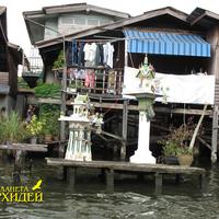 Знаменитые каналы Бангкока, в которых водится сетчатый питон