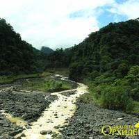 Высохшее русло реки