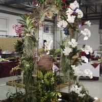 Арка, украшенная орхидеями