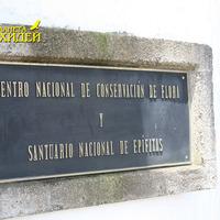 Национальный центр по сохранению флоры и национальный заповедник эпифитов