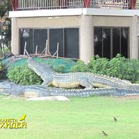 Скульптуры крокодилов