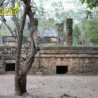 Культовые строения, странные деревья в парке Шкарет