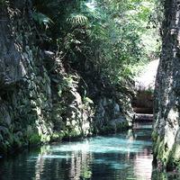 Высокие каменистые берега ручья парка Шкарет