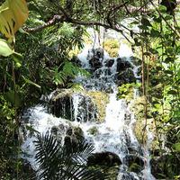 Водопад в национальном парке Мексики