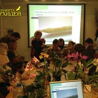 Обсуждение процесса опыления орхидей