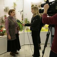 Елена Матеэско дает интервью
