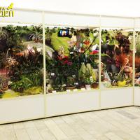 Витрины выставки