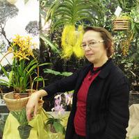 Участник выставки, дежурная Людмила Дроздова рядом со свои роскошным Цимбидиумом, который радует нас свои цветением на выставке уже не первый год