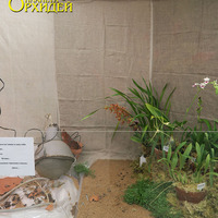 Витрина Главного Ботанического сада