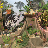 Экспозиция на выставке «Путешествие к орхидеям 2015»