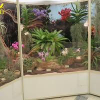 Экспозиция «Планета Орхидей»