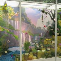 Малый зал. Орхидеи в сказке. Экспозиция орхидей Сергея Беляева