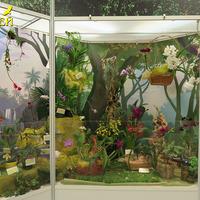 Экспозиция «Орхидеи в сказке» «Планеты Орхидей»