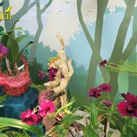 Гибридная Каттлея и Дендробиумы в сказке «Планеты Орхидей»