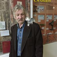 Наш помощник, дежурный по музею Юрий Иванович со своими питомцами на вечернем обходе