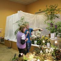 Марина Бугрова со спутницей (гости выставки) обсуждают