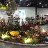Островок орхидей на выставке WOC 21