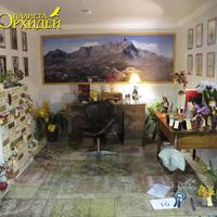 Комната ученого ботаника на выставке WOC 21