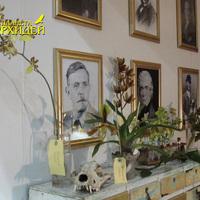 Фрагмент комнаты с портретами исследователей-ботаников