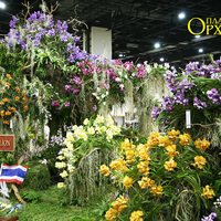 Боковая часть композиции, оформленной представителями Таиланда