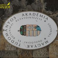 Название института и парка
