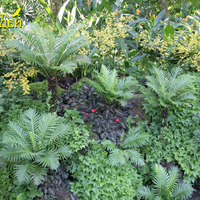 Красиво подобранные композиции растений