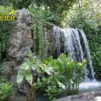 Маленький водопад вдоль дорожки. На камнях водопада растут и цветут орхидеи